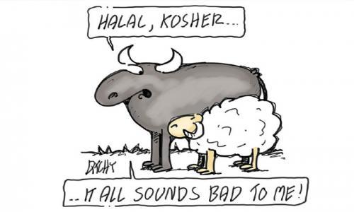 Tiêu chuẩn Halal và Kosher là gì? Sự khác biệt giữa Halal và Kosher